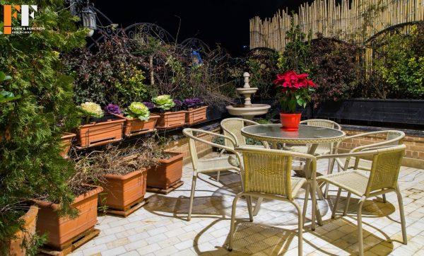 دکوراسیون داخلی گلخانه